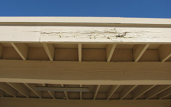 How To Deal With Dry Rot On Your Roof Morgan Asphalte
